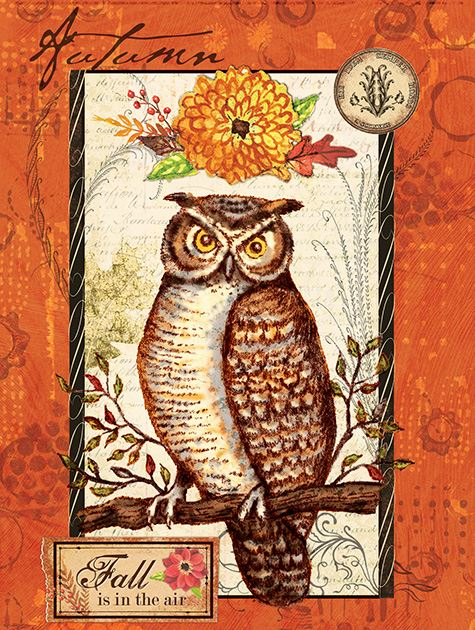Picture of Autumn Owl