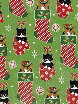 Picture of Cats in Stockings