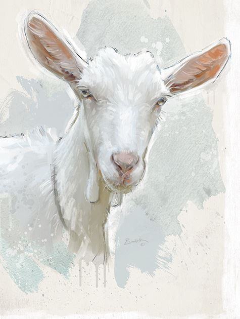 Picture of Painted Goat