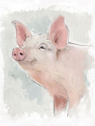 Picture of Painted Pig